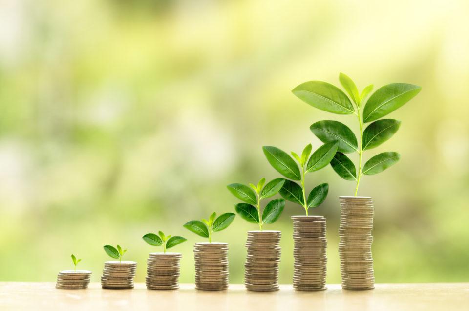 Astonomia hôtels domaines luxe écoresponsable valeur entrepreneurs croissance responsable mission entreprise